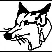 M16 – Fox – 105
