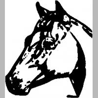 E6 – Horse – 3 – 102
