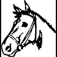 E4 – Horse – 1 – 12