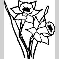 F5 – Lily – 64