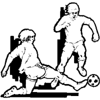 SC2 – Soccer – players – 231