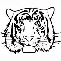 M29 – Tiger – 249
