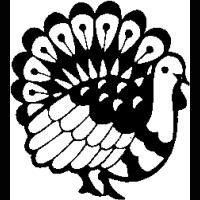 H9 – Turkey – 216