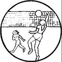 VB2 – Volleyball – 115